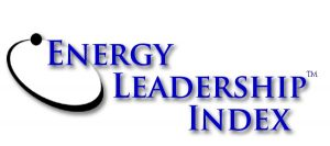 Energy Leadership Index